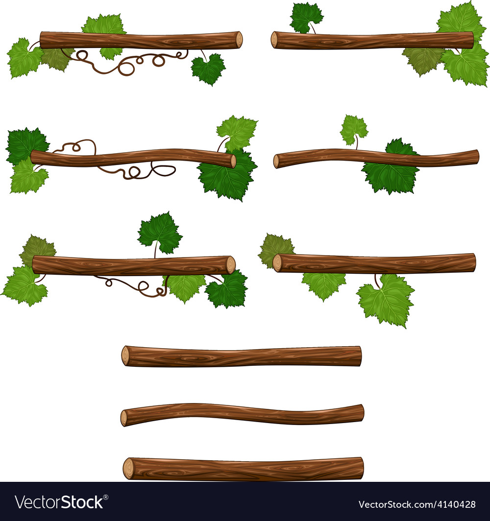 Set of branches vector