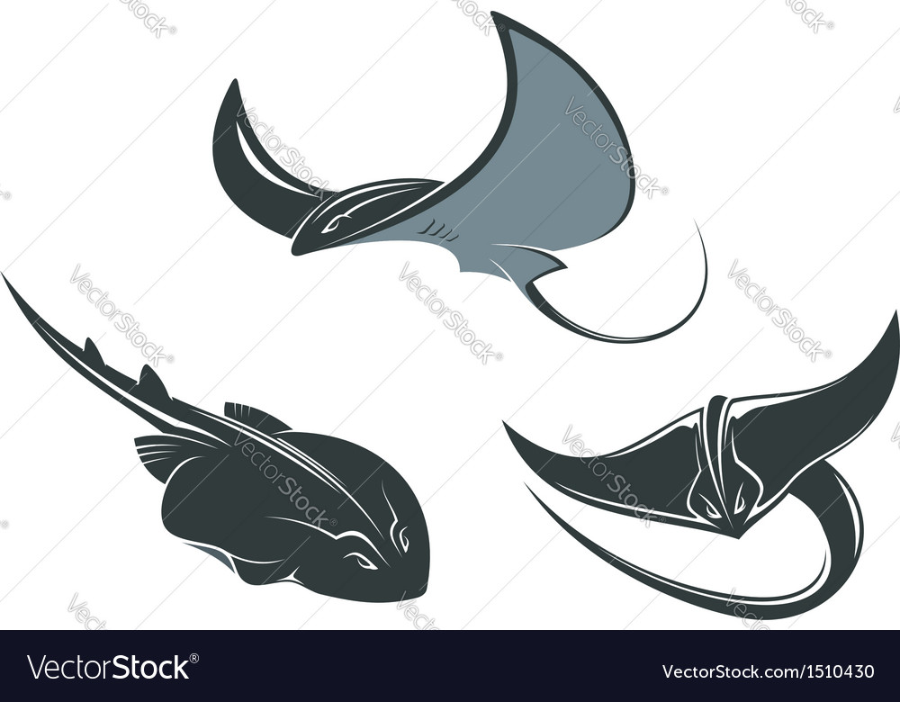 Stingray mascots vector
