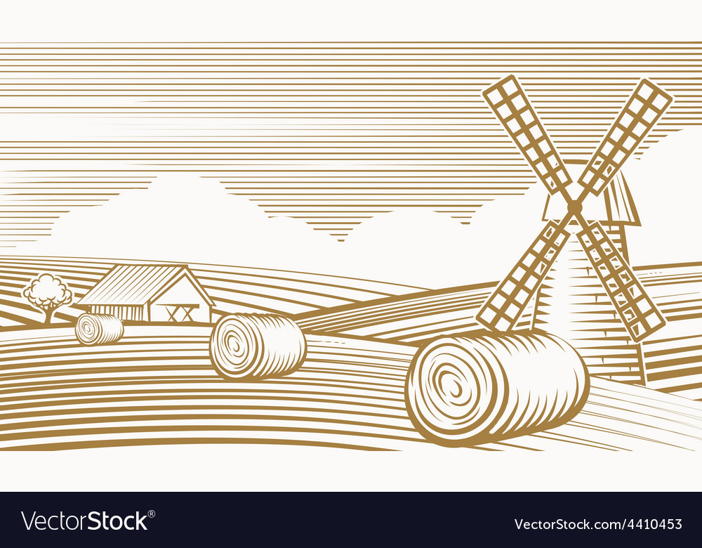 Agriculture landscape with mill and barn vector