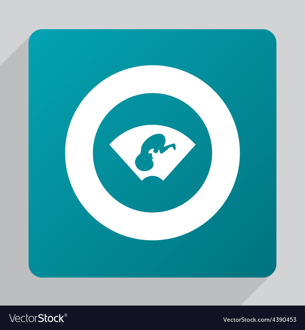 Flat ultrasound baby icon vector