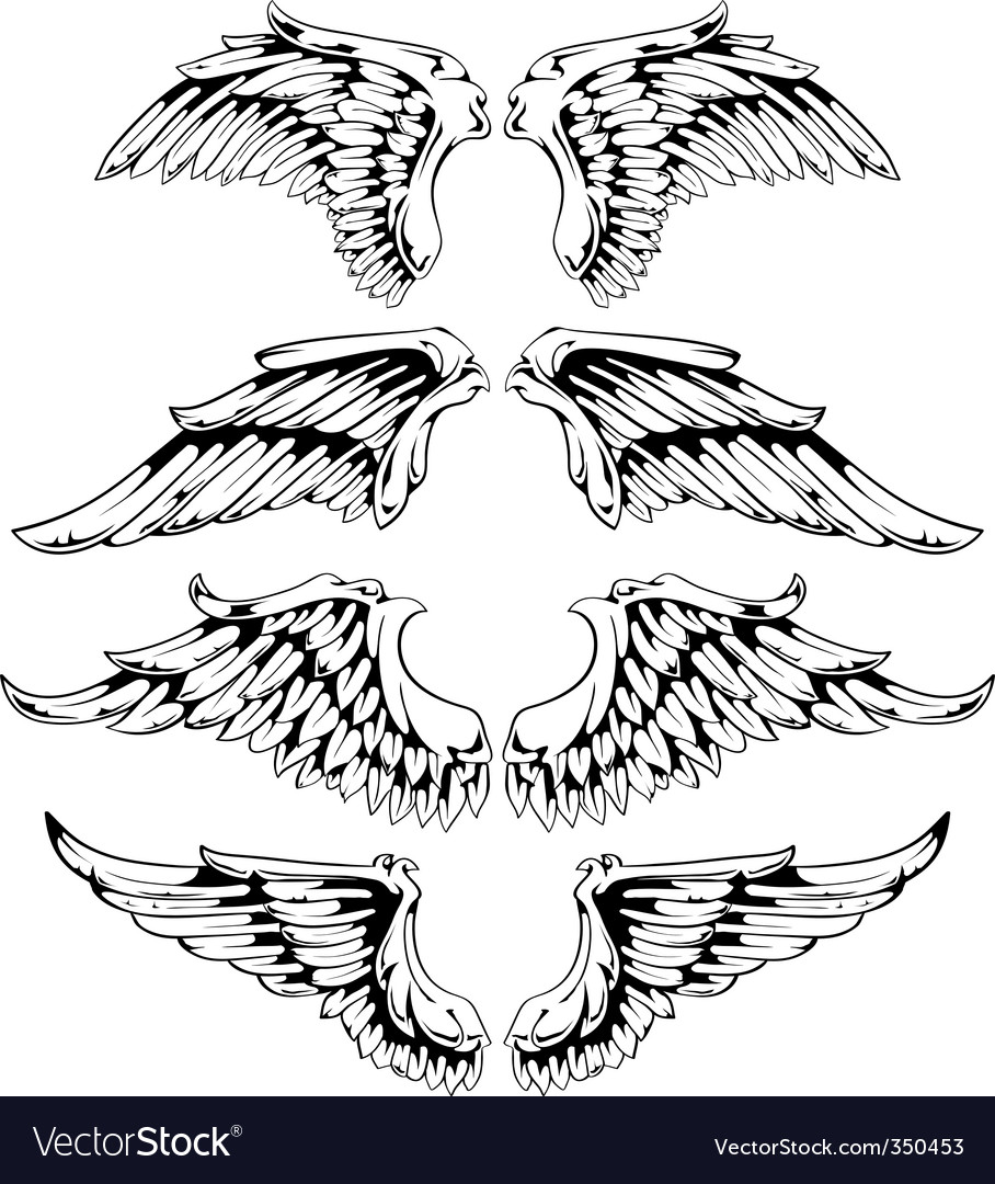 Wings for your vintage design vector
