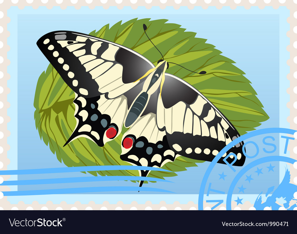 Postage stamp with a butterfly vector