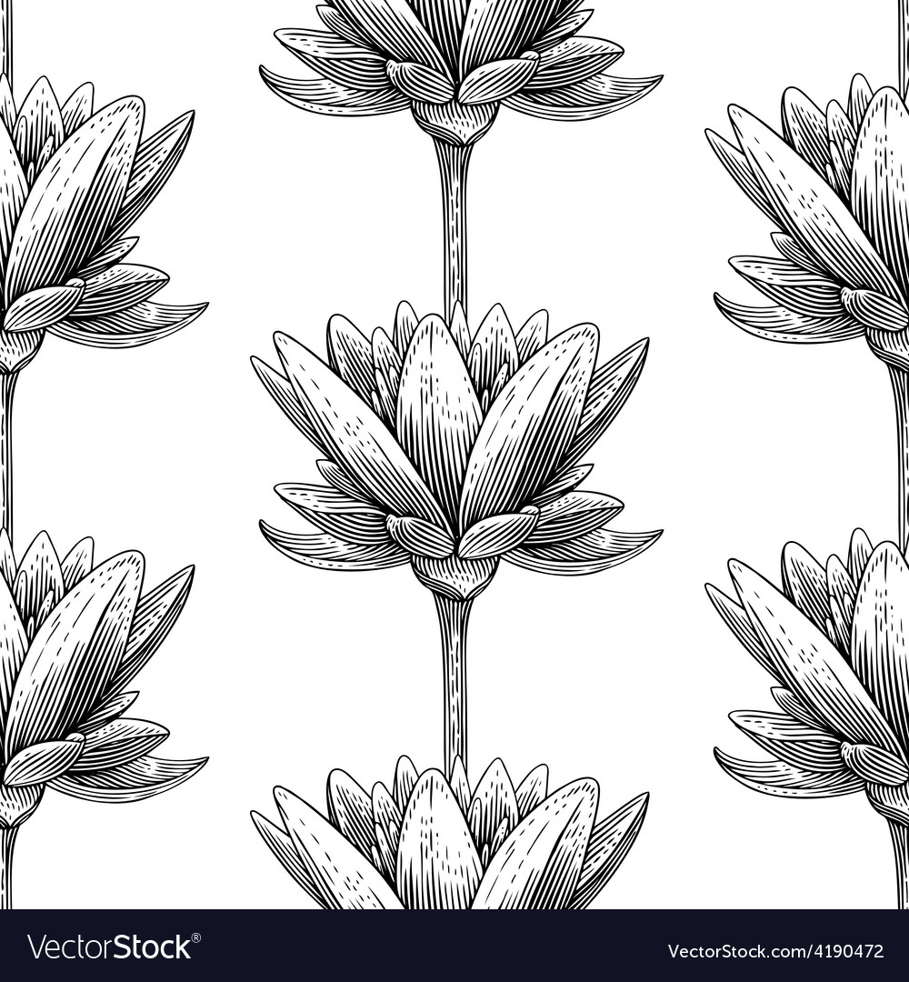 Engraved lotus vector
