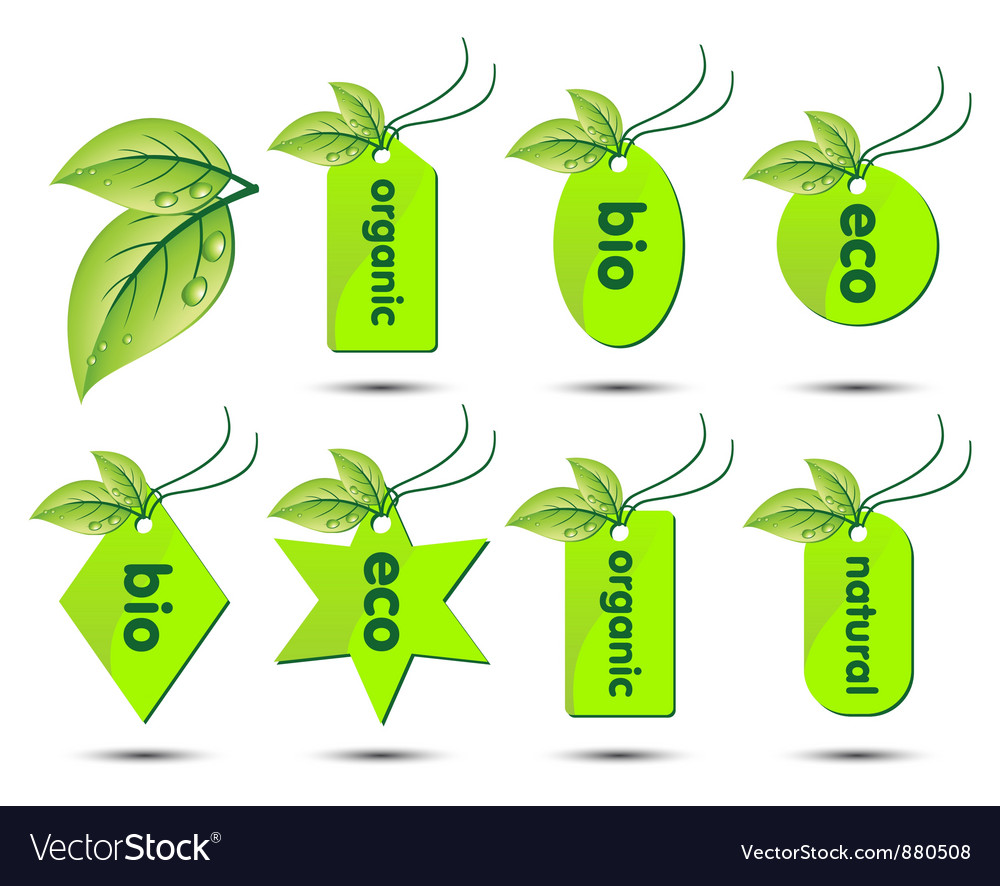 Collection of ecological stickers vector