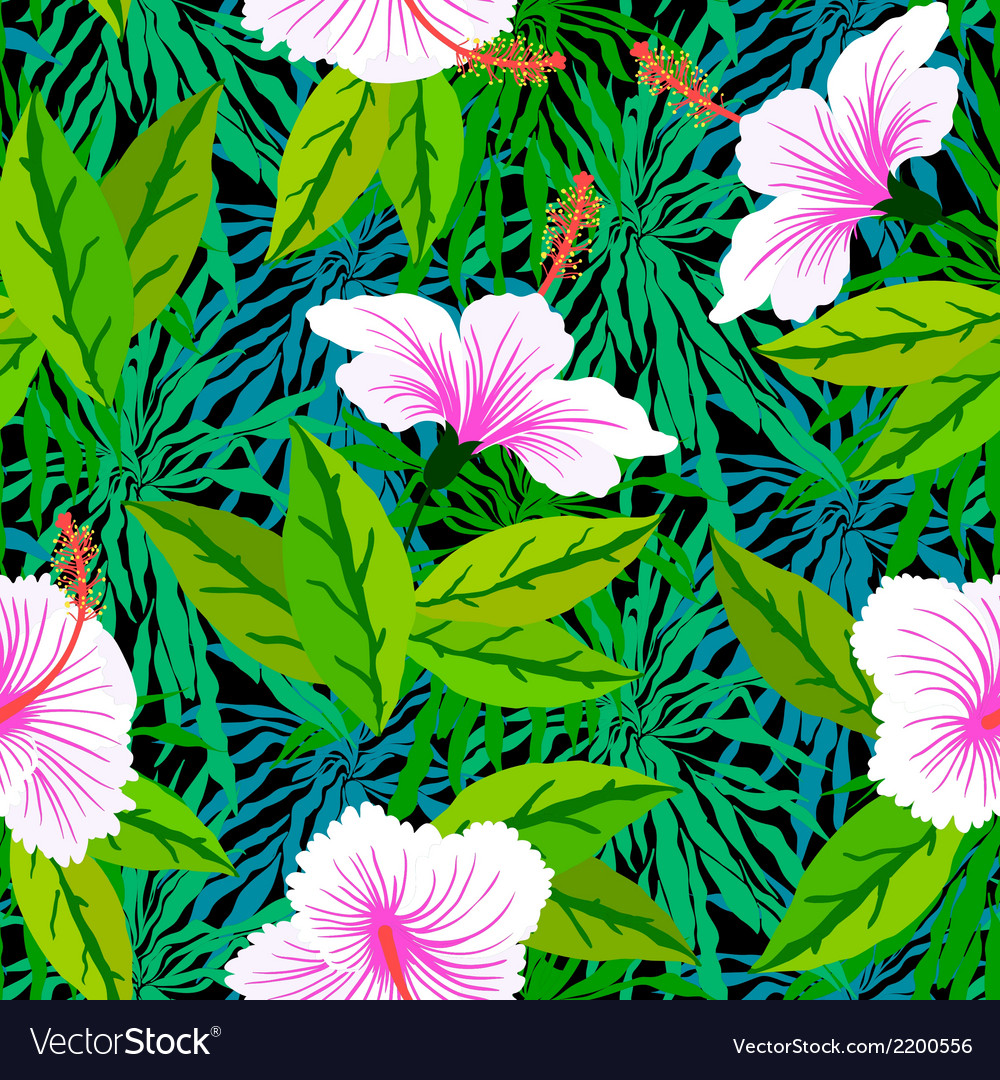 Tropical pattern with white hibiscus flowers vector