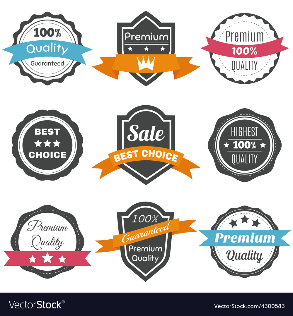 Collection of retro vintage labels best choice vector