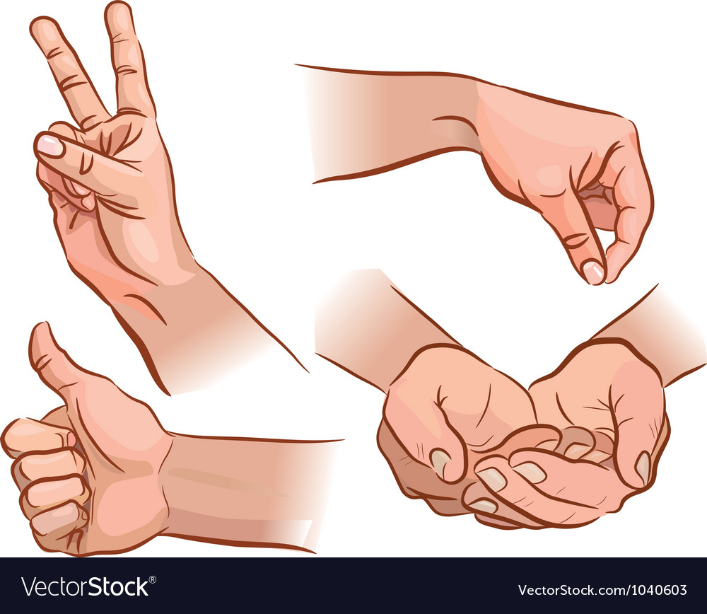 Hands and gestures vector