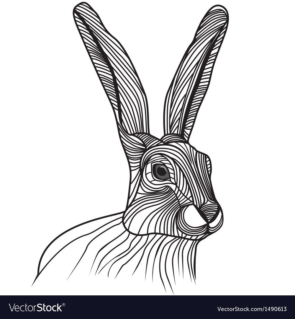 Rabbit or hare head animal for vector