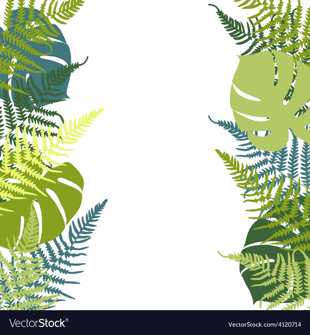 Fern and monstera background vector