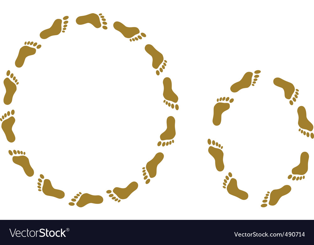 Traces letter o vector