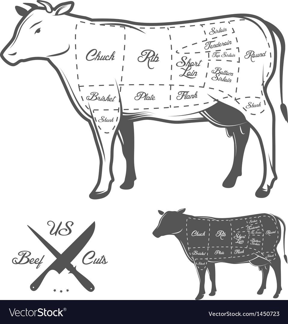 American cuts of beef vector
