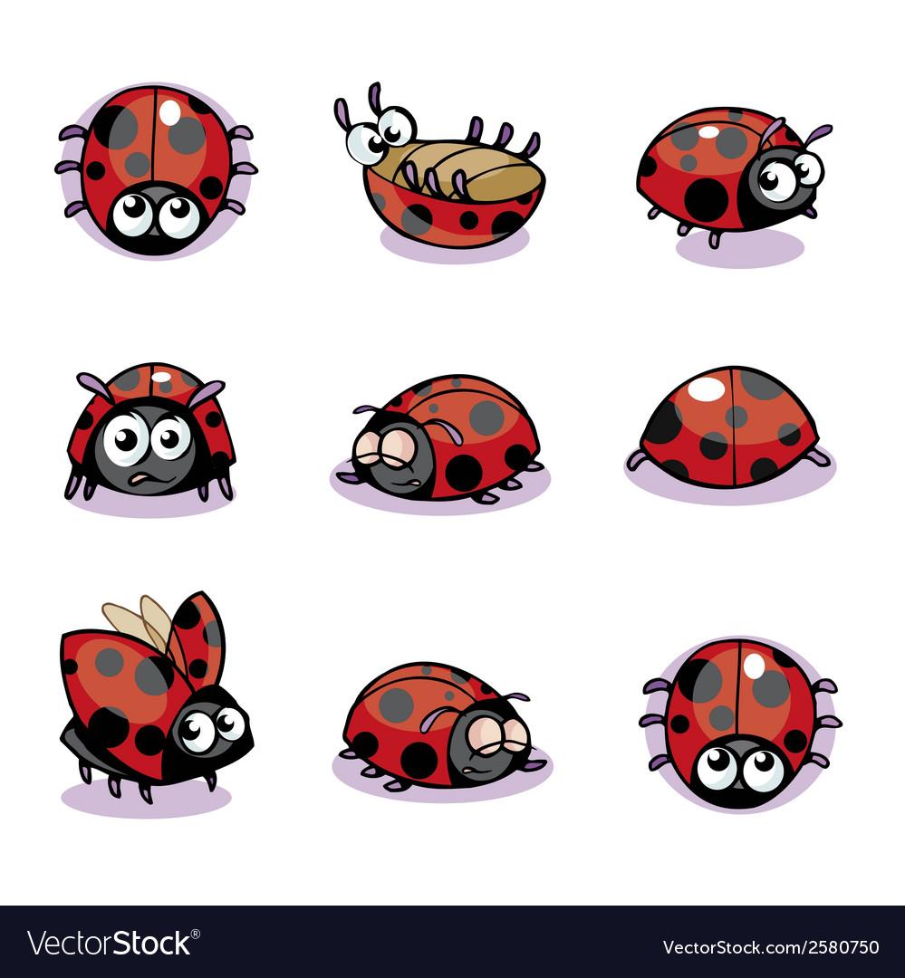 Lady bug vector