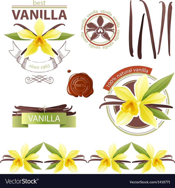 Vanilla emblems vector