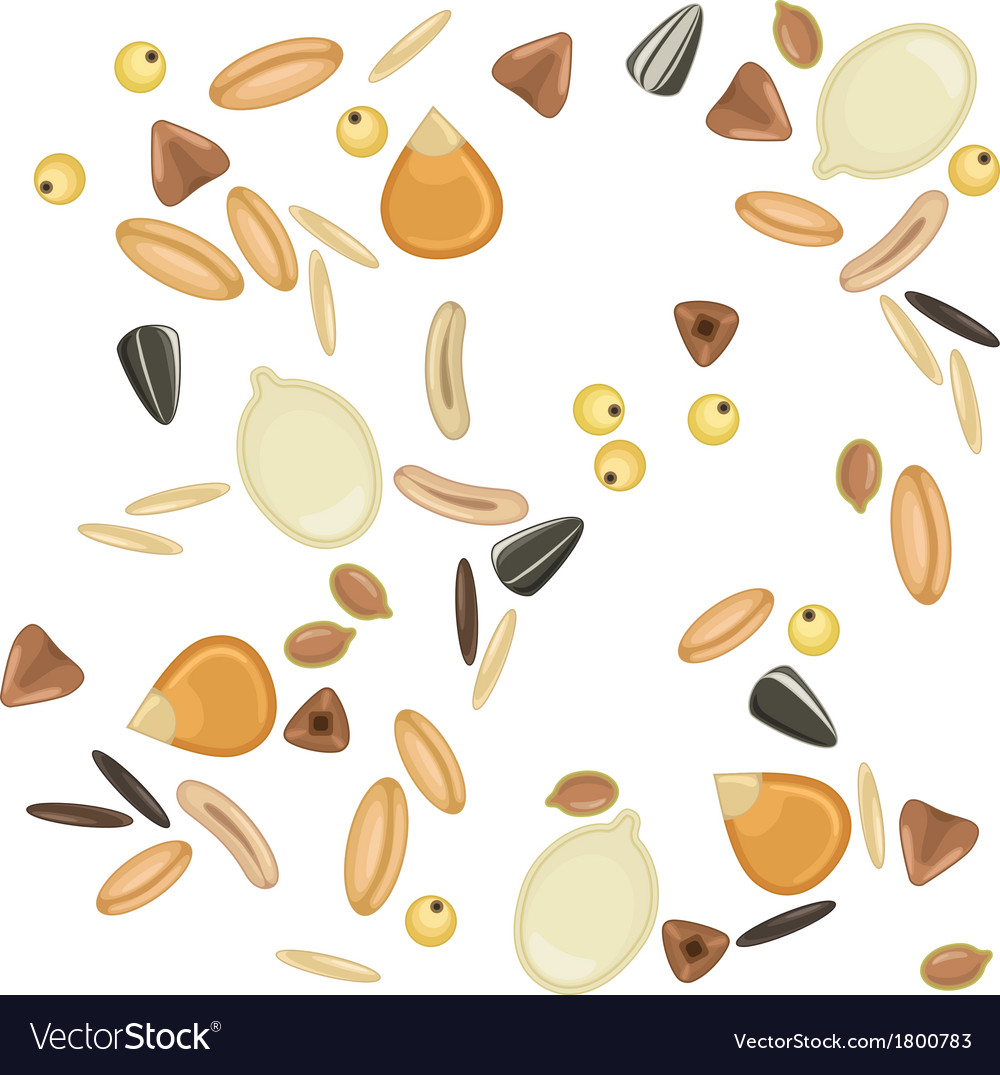 Cereals grains seamless pattern vector