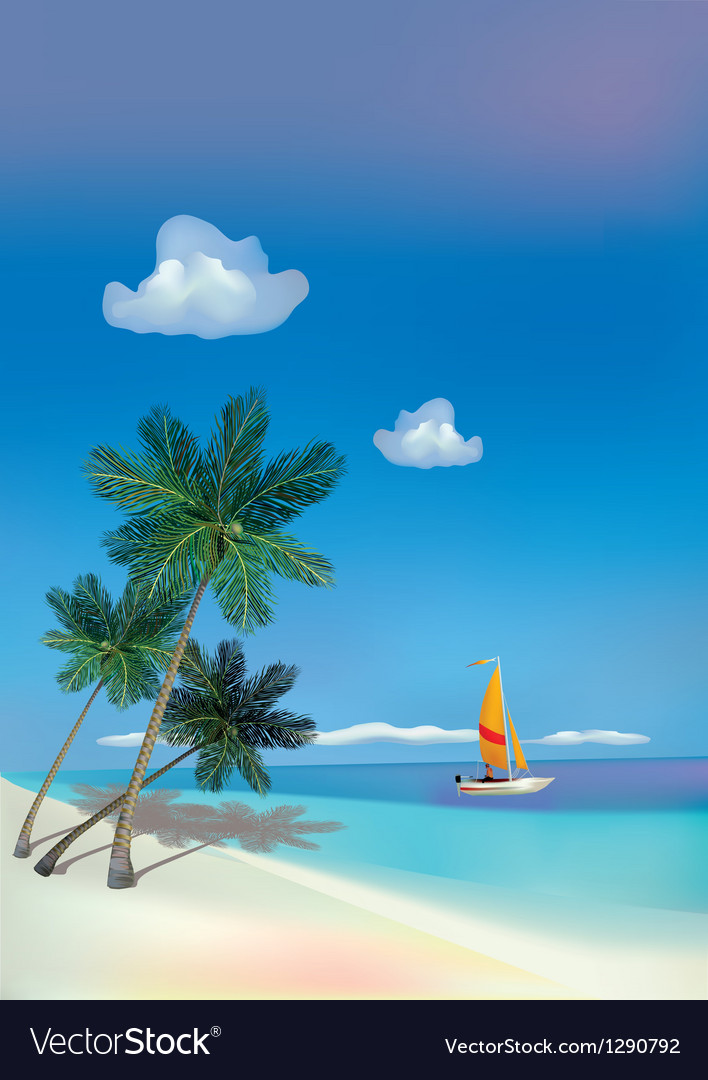 The sea yachts palm trees travel vector
