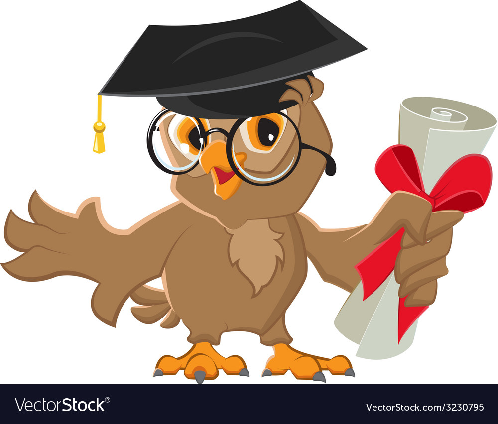 One owl diploma vector