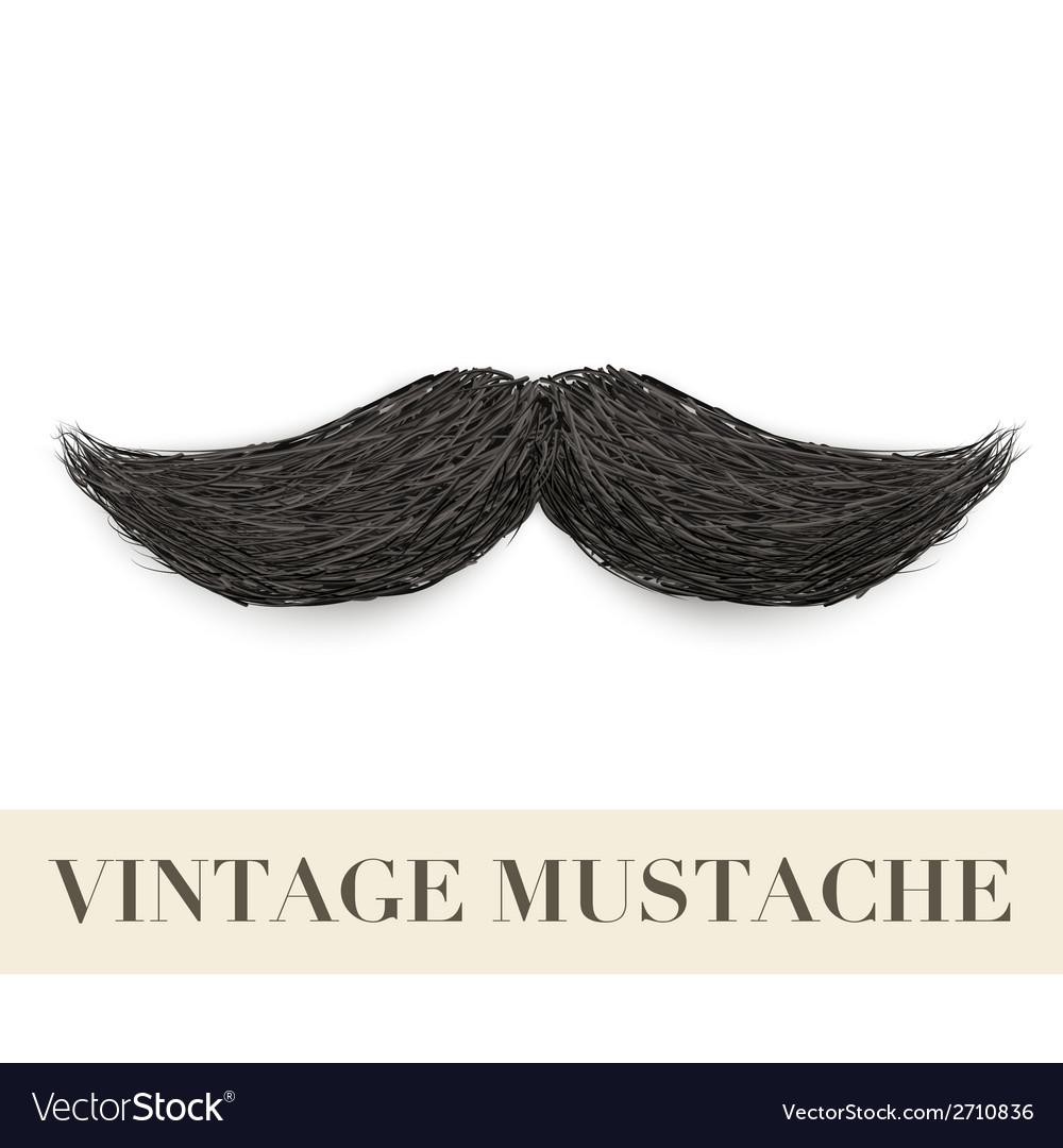 Realistic black vintage curly mustache vector