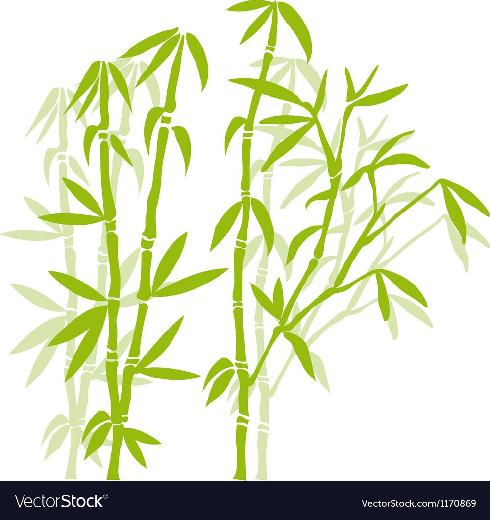 Green bamboo trees vector