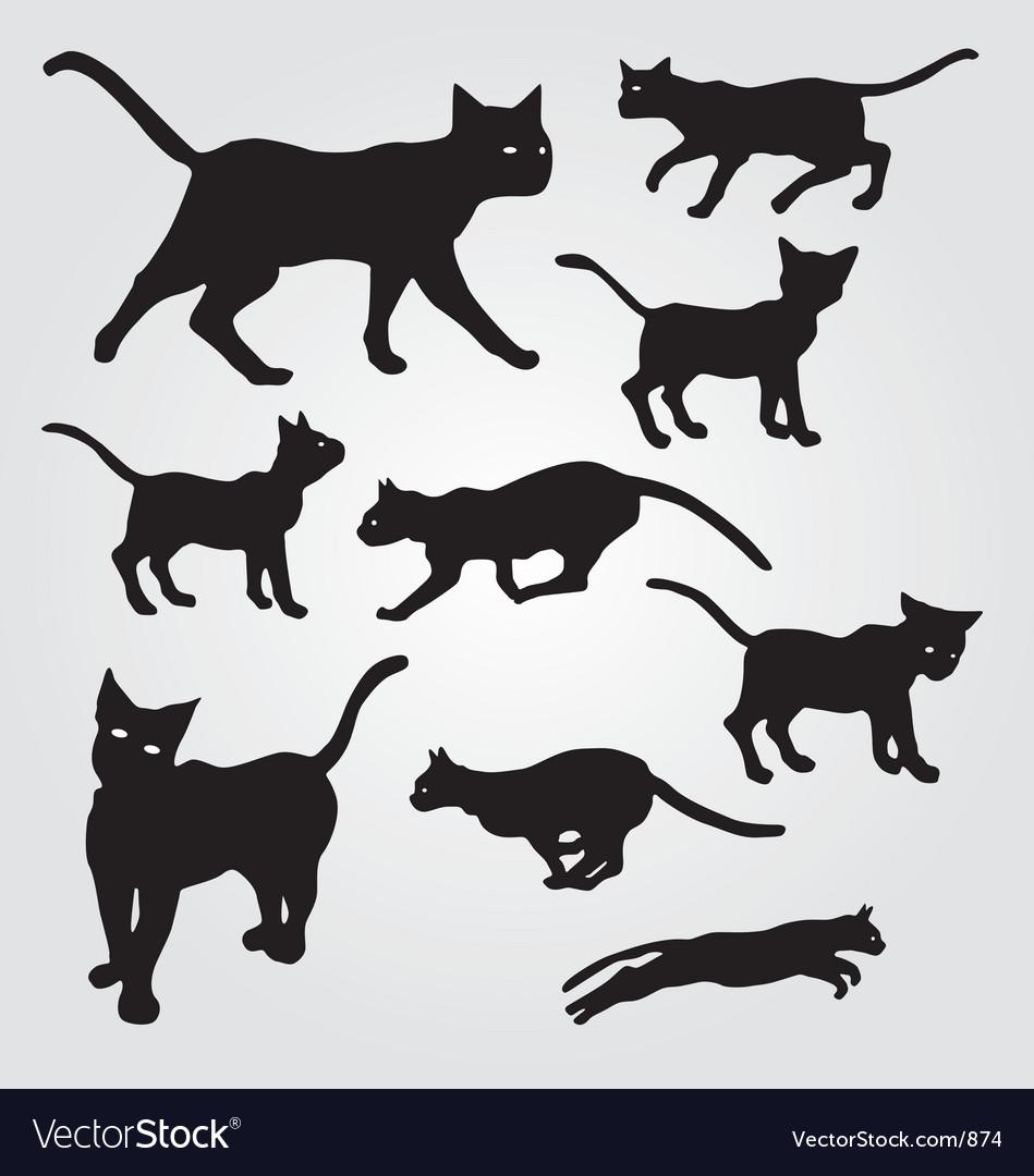 Domestic cats vector