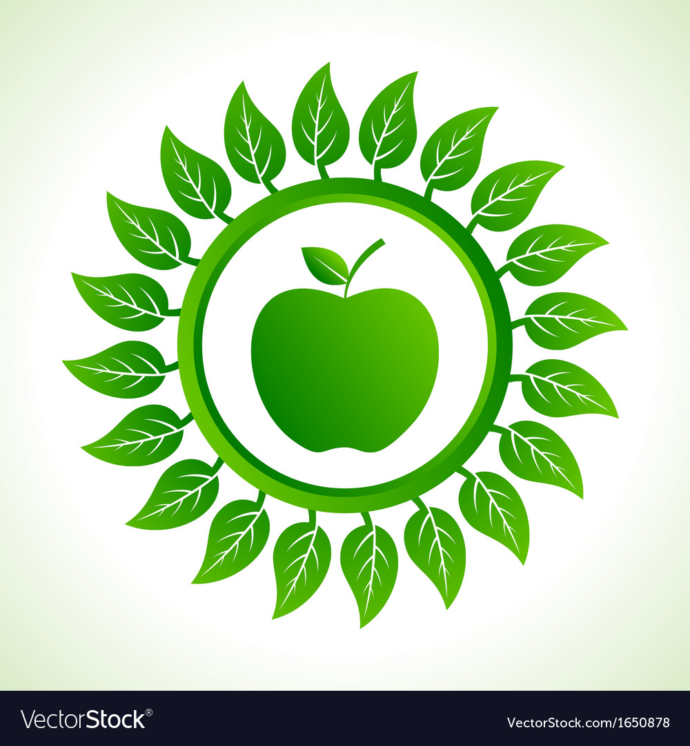 Green apple organic food with leaf vector