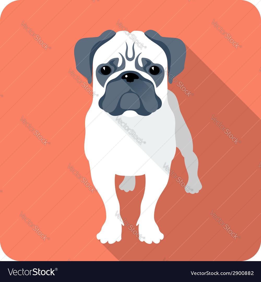 Dog pug icon flat design vector