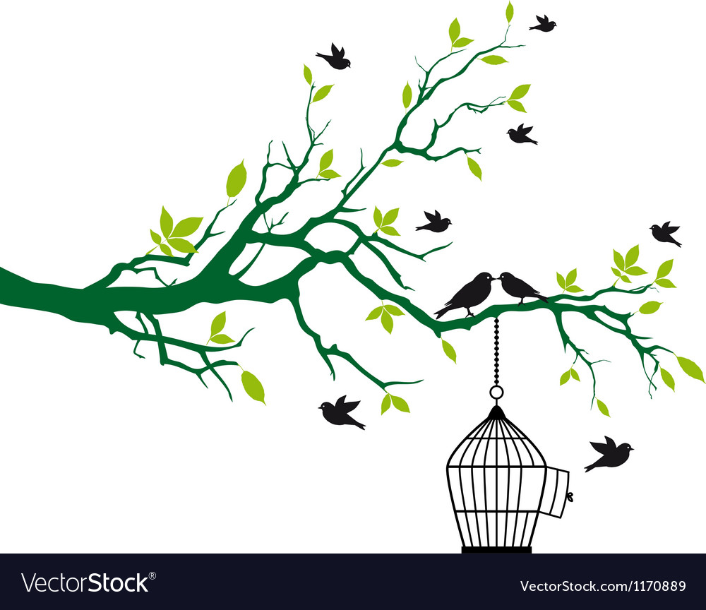 Tree branch with birds and birdcage vector