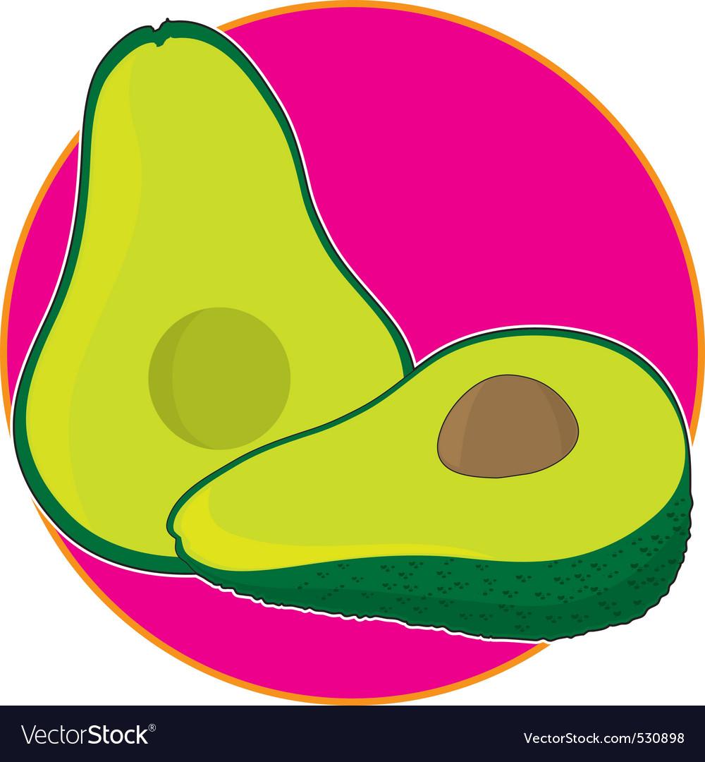Avocado graphic vector