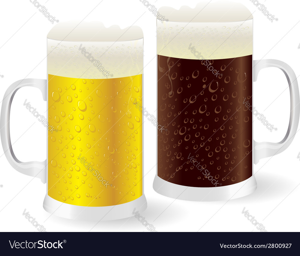 Two mugs of beer vector