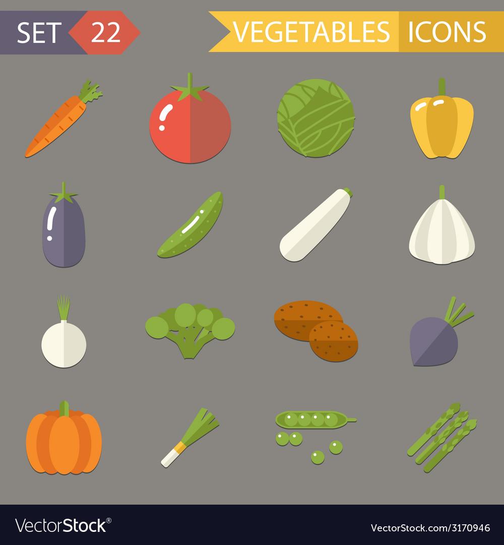 Vegetables symbols healthy and healthsome food vector