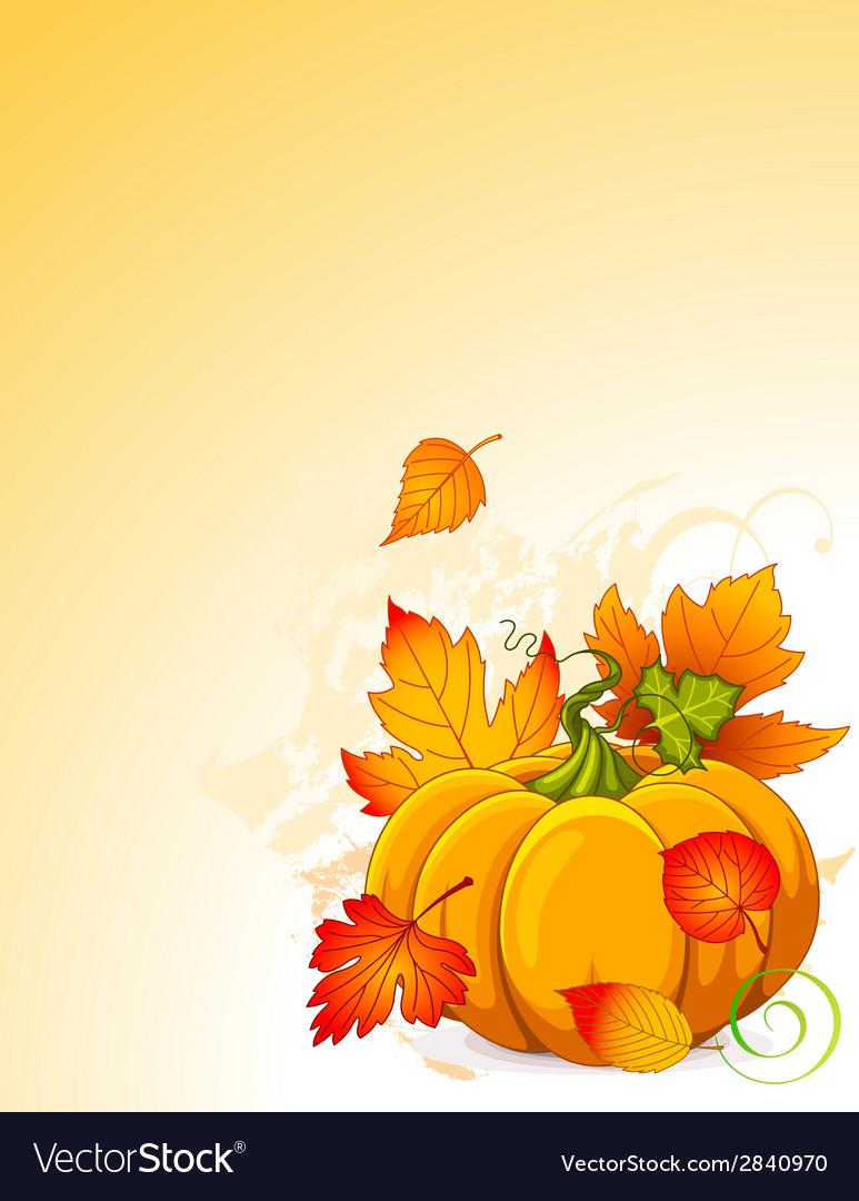 Autumn pumpkin vector