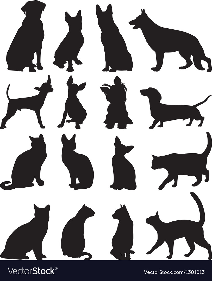 Silhouettes cats and dogs vector
