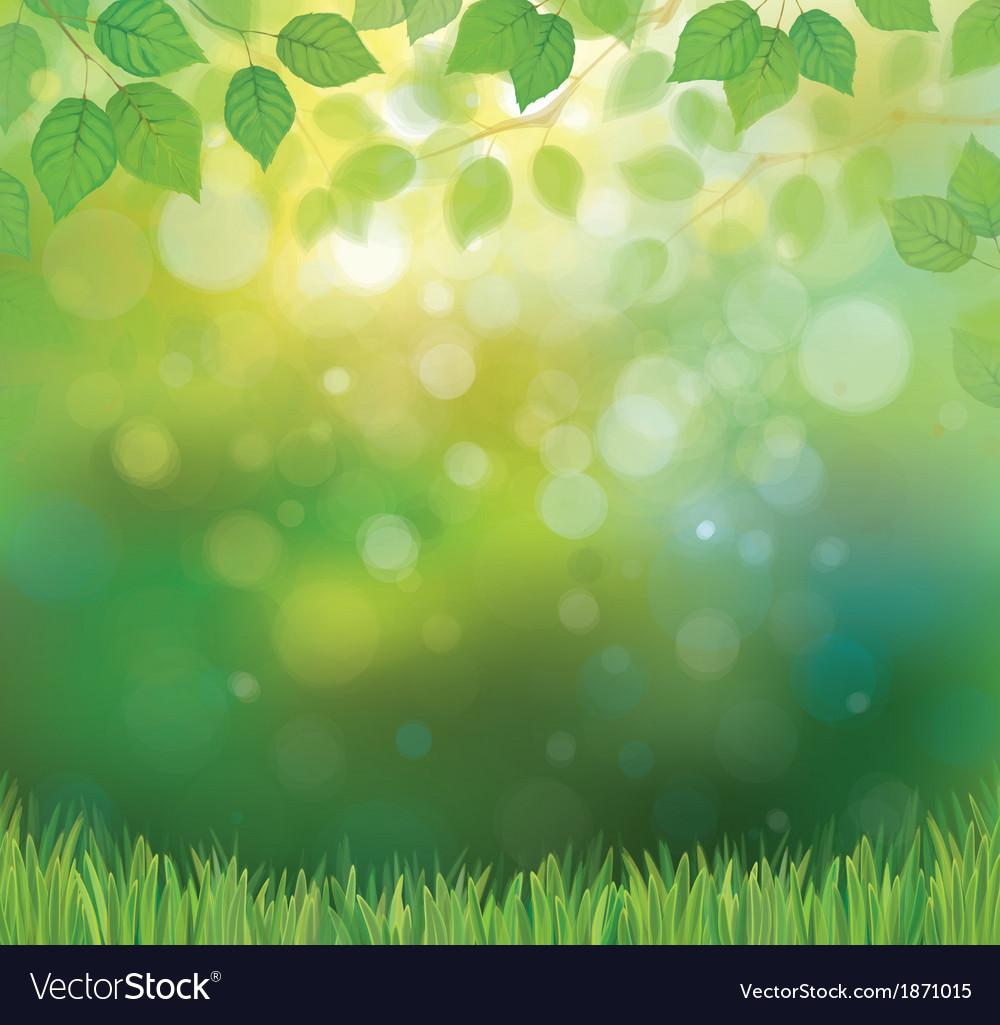 Background spring vector