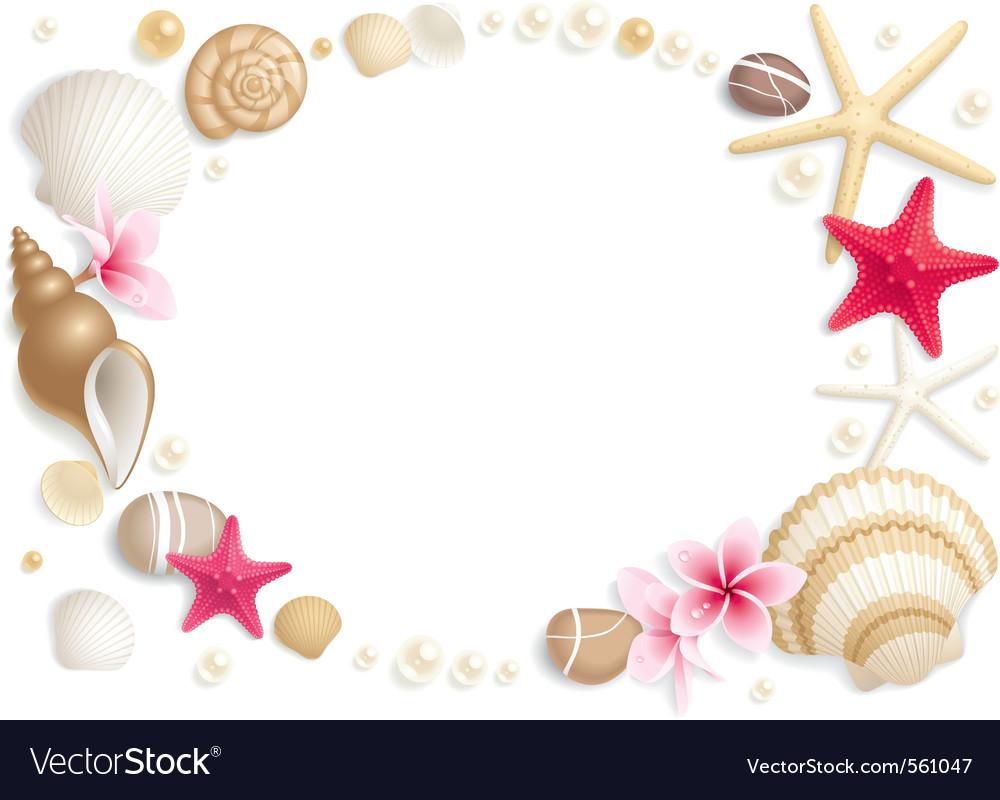 Seashell frame vector