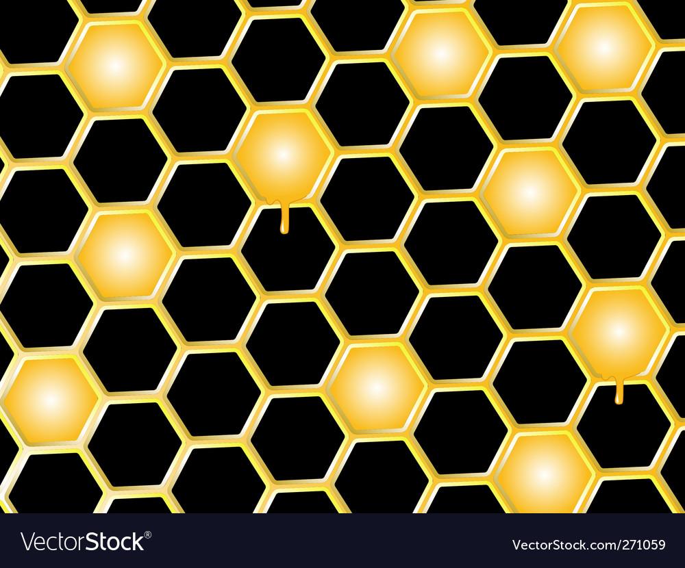 Honey comb background vector