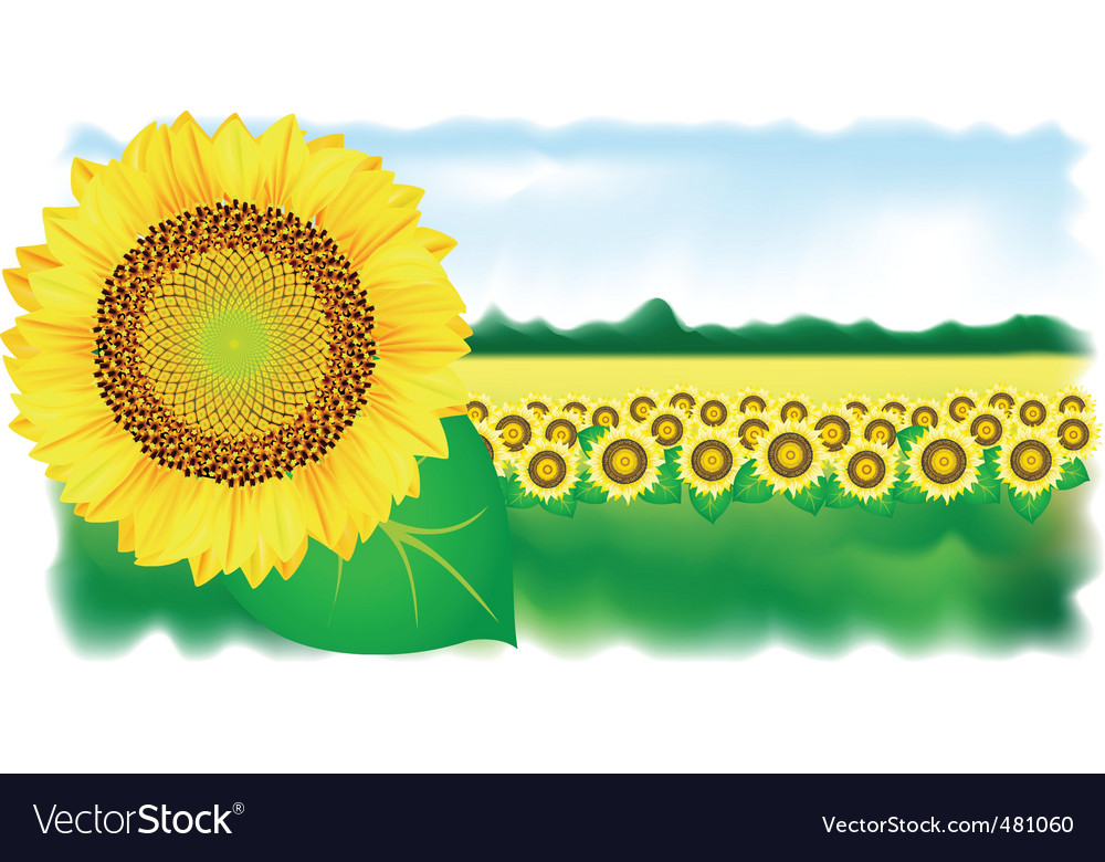 Wer and field vector illustration vector