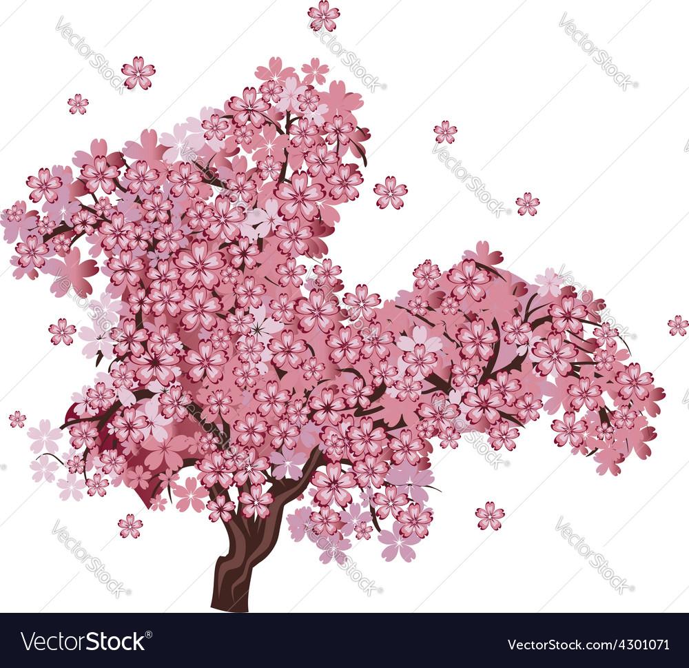 Cherry blossom tree2 vector