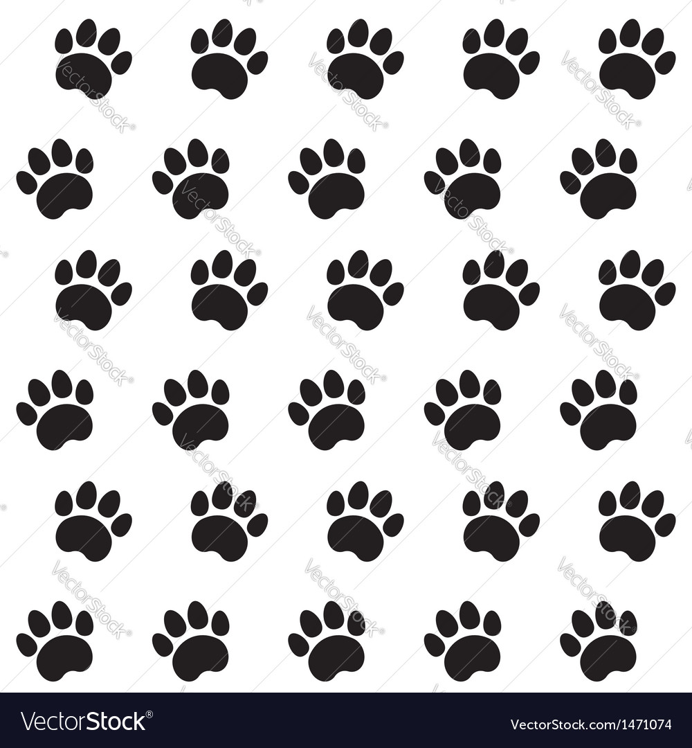 Traces of cat textile pattern vector
