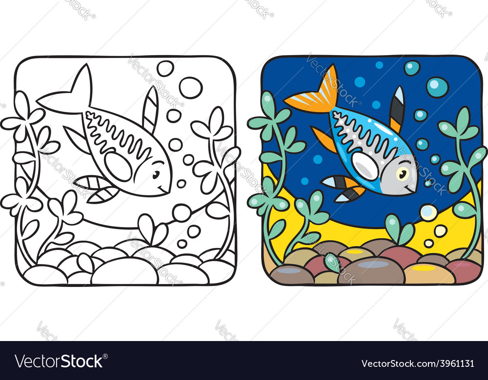 X-ray fish coloring book vector