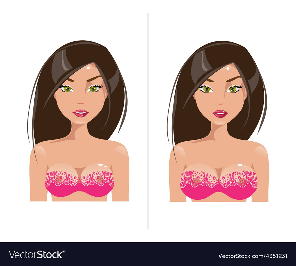 Woman with small and large breast size vector