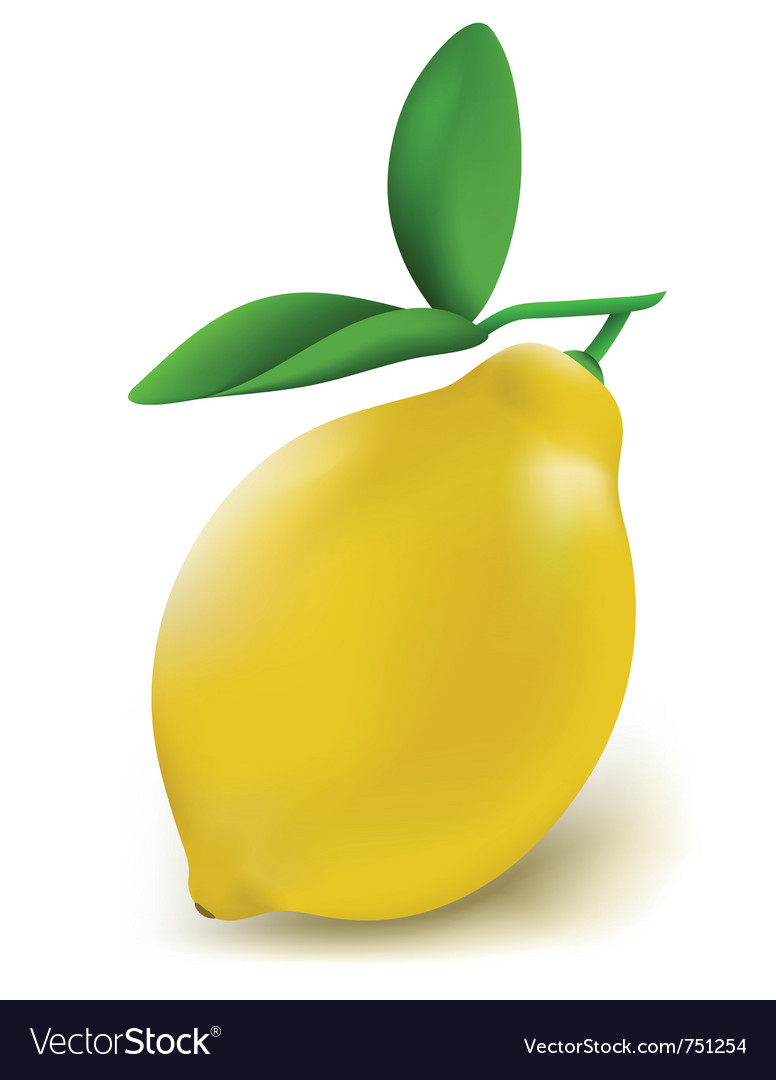 Fresh lemon vector