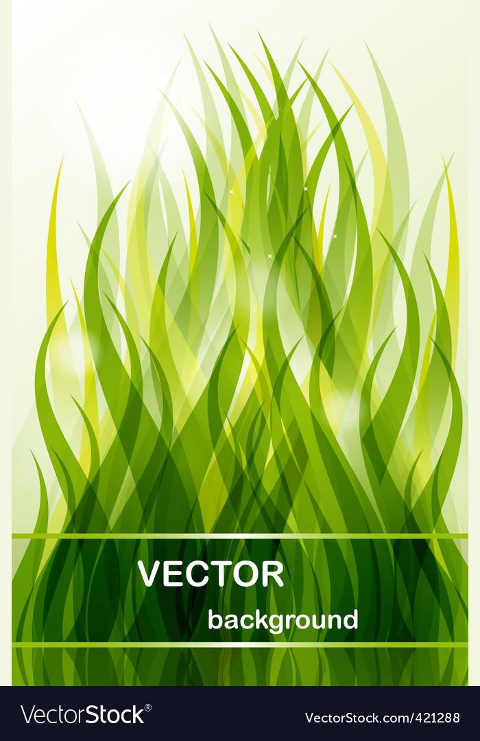 Abstract background green grass vector