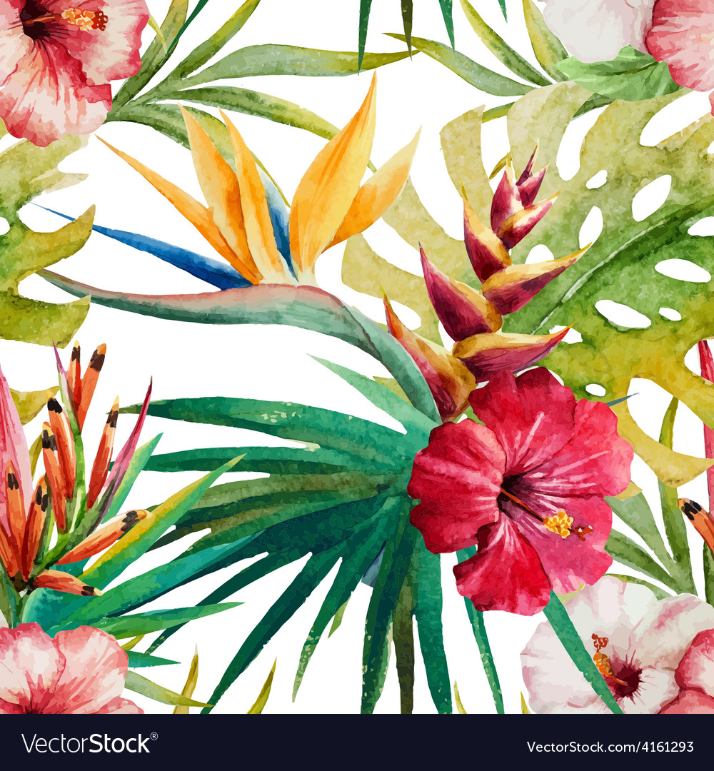Sterlitzia tropical pattern vector