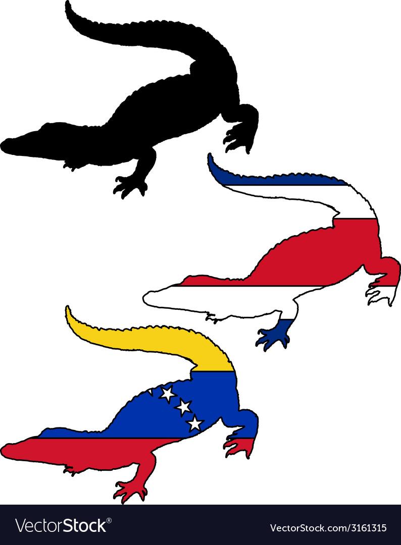 Crocodile south america vector