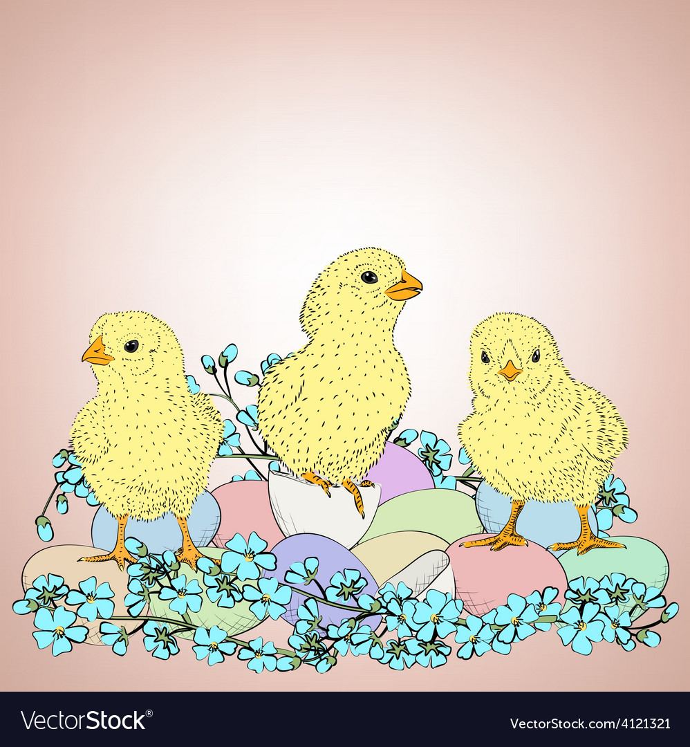 Chickens and flowers vector