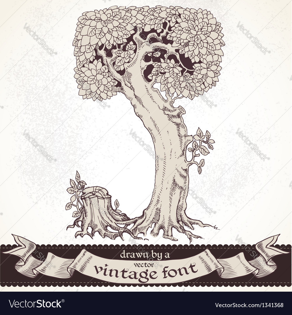 Fable forest hand drawn by a vintage font - j vector