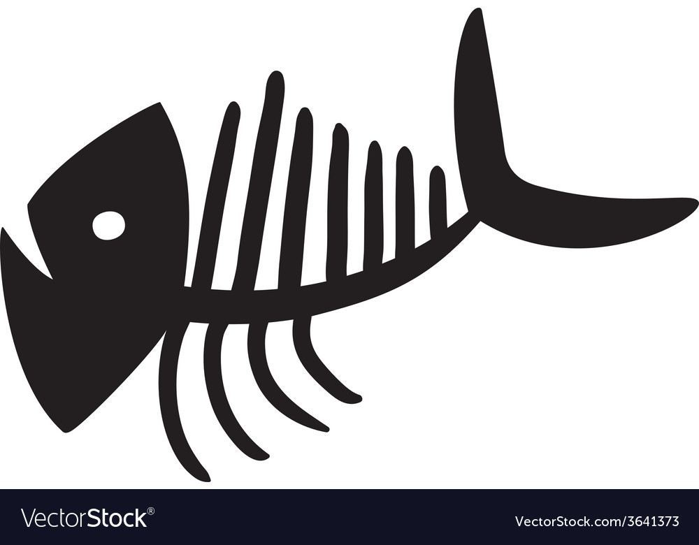 Curve fish skeleton vector