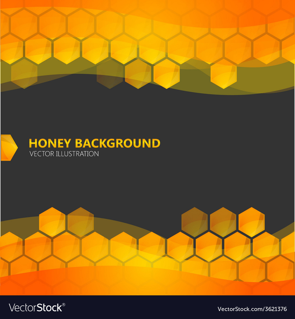 Honeycomb with honey on the black background vector
