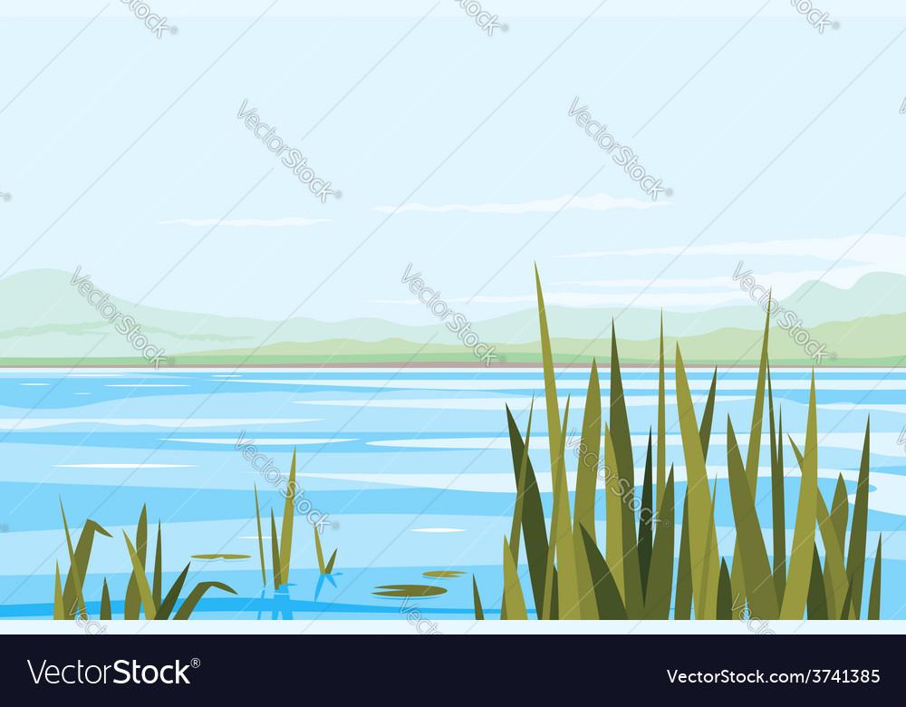 Bulrush plants river landscape vector