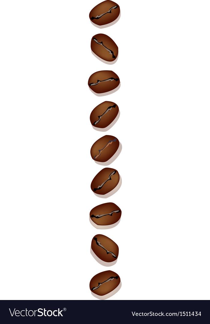 Coffee bean row vector