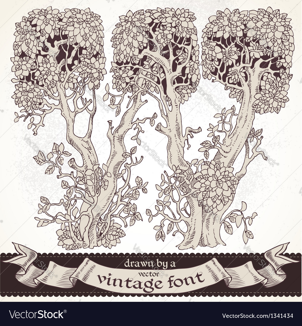 Fable forest hand drawn by a vintage font - w vector